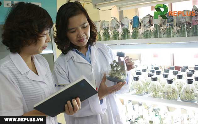 khảo-nghiệm-thuốc-bảo-vệ-thực-vật